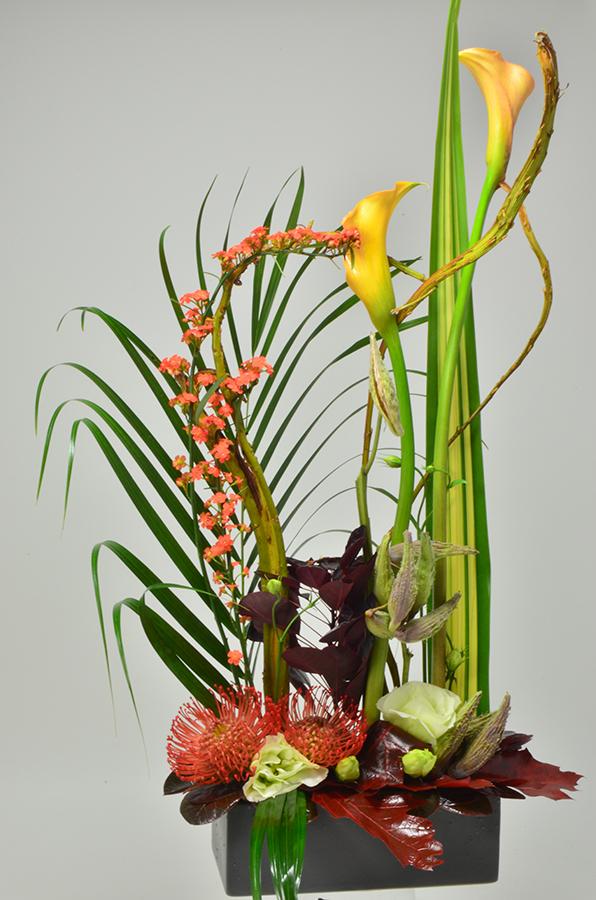 fleuriste-montpellier-juvignac-DSC_0043