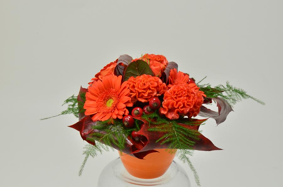 fleuriste-montpellier-juvignac-DSC_0069