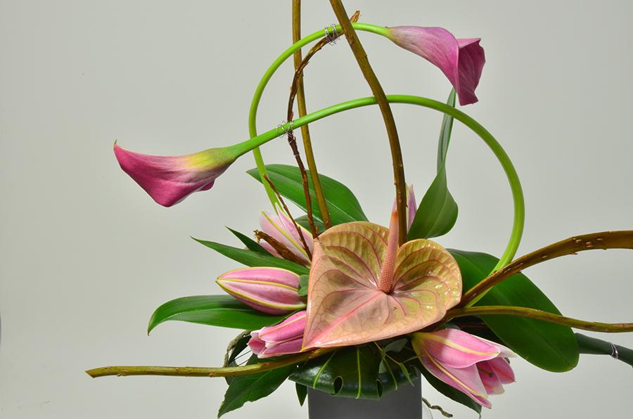 fleuriste-montpellier-juvignac-DSC_0091