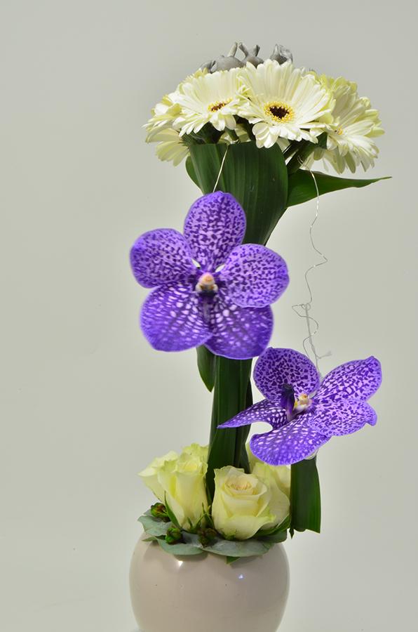 fleuriste-montpellier-juvignac-DSC_0094