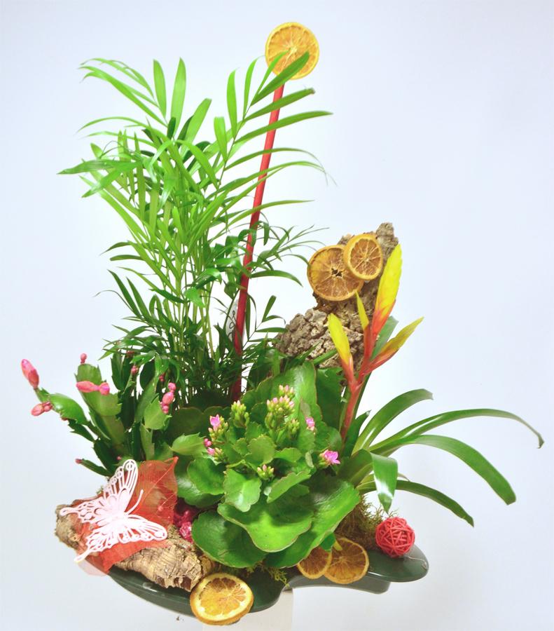 fleuriste-montpellier-juvignac-DSC_0878-W