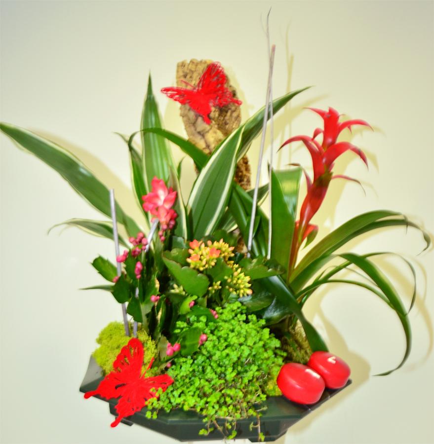 fleuriste-montpellier-juvignac-DSC_0886-W