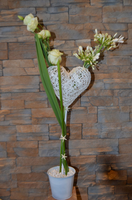 fleuriste-montpellier-juvignac-agapanthe avec des etoiles de mer
