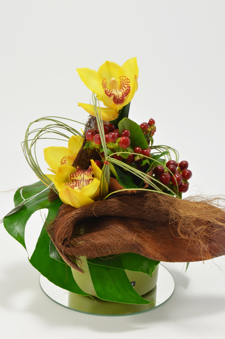fleuriste-montpellier-juvignac-amaryllis