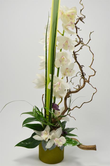fleuriste-montpellier-juvignac-cymbidium orchidees