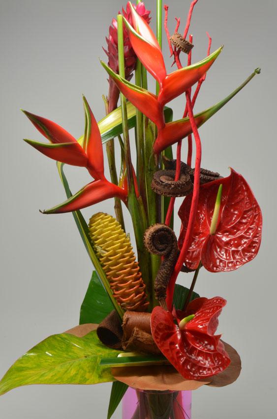 fleuriste-montpellier-juvignac-exotique (2)