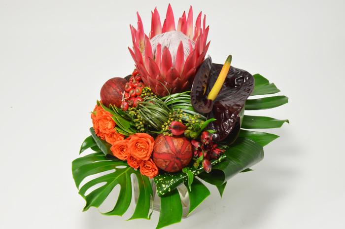 fleuriste-montpellier-juvignac-exotique-3