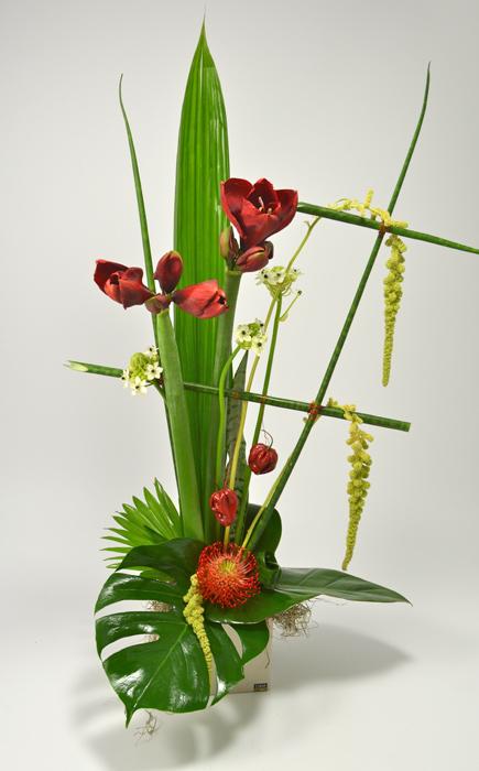 fleuriste-montpellier-juvignac-exotique-6