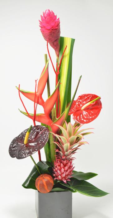 fleuriste-montpellier-juvignac-exotique