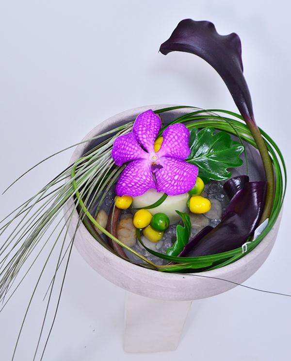 fleuriste-montpellier-juvignac-orchidee-vanda-2