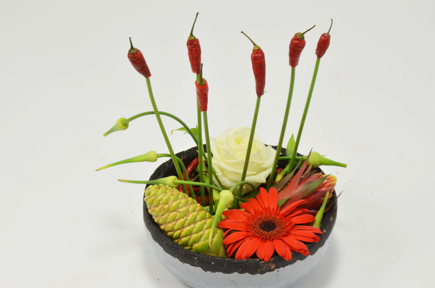 fleuriste-montpellier-juvignac-piments et tillandsias