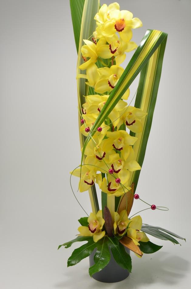 fleuriste-montpellier-juvignac-précieuse orchidée