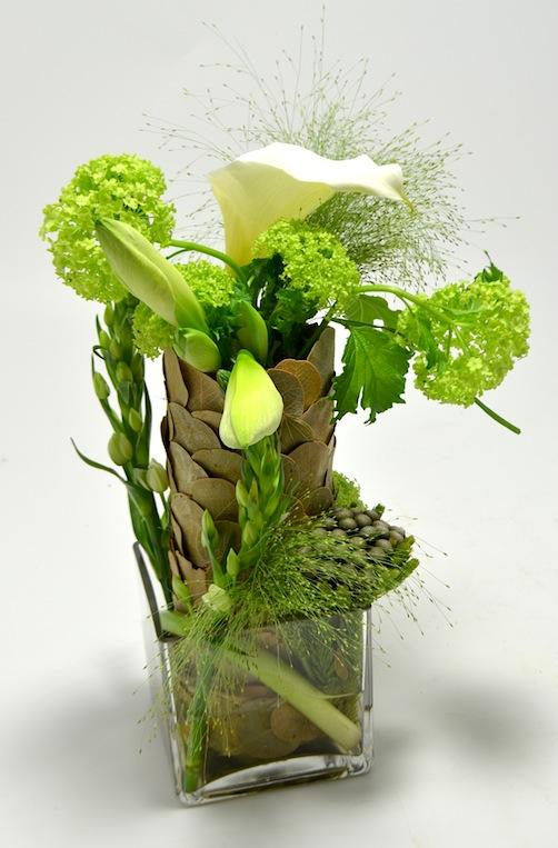 fleuriste-montpellier-juvignac-tulipe-2