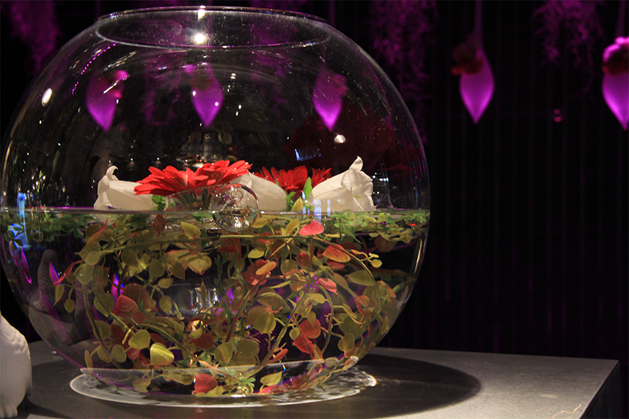 fleuriste-montpellier-juvignac-vase-aquarium