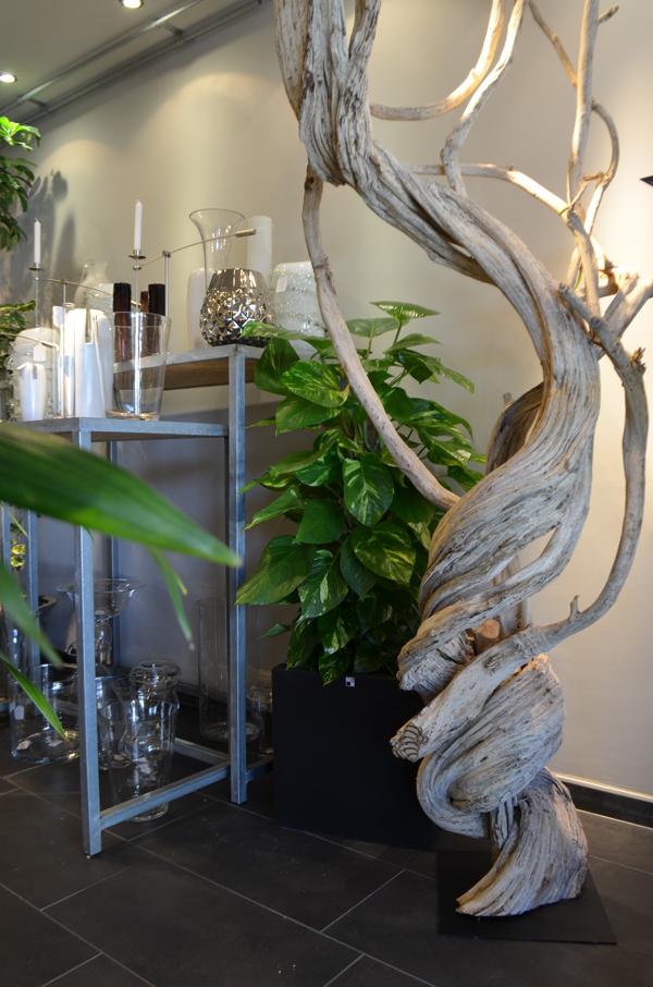 lianes-bois-naturel-decoration-interieur-structure-luminaire