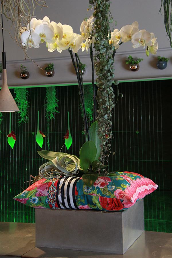 orchidée sur coussin de couleurs