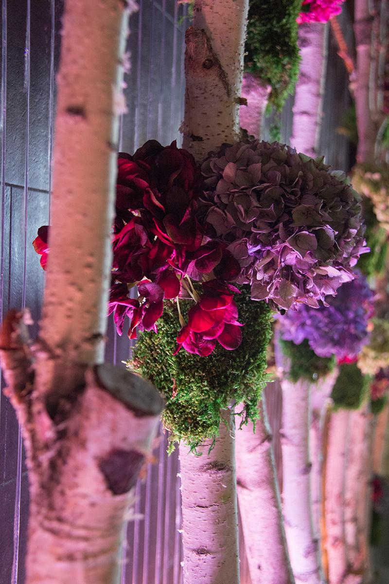 symphonie-florale-automne-hortensias-12
