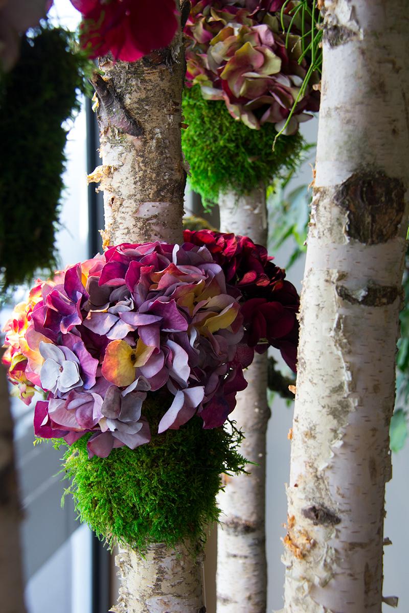 symphonie-florale-automne-hortensias-9