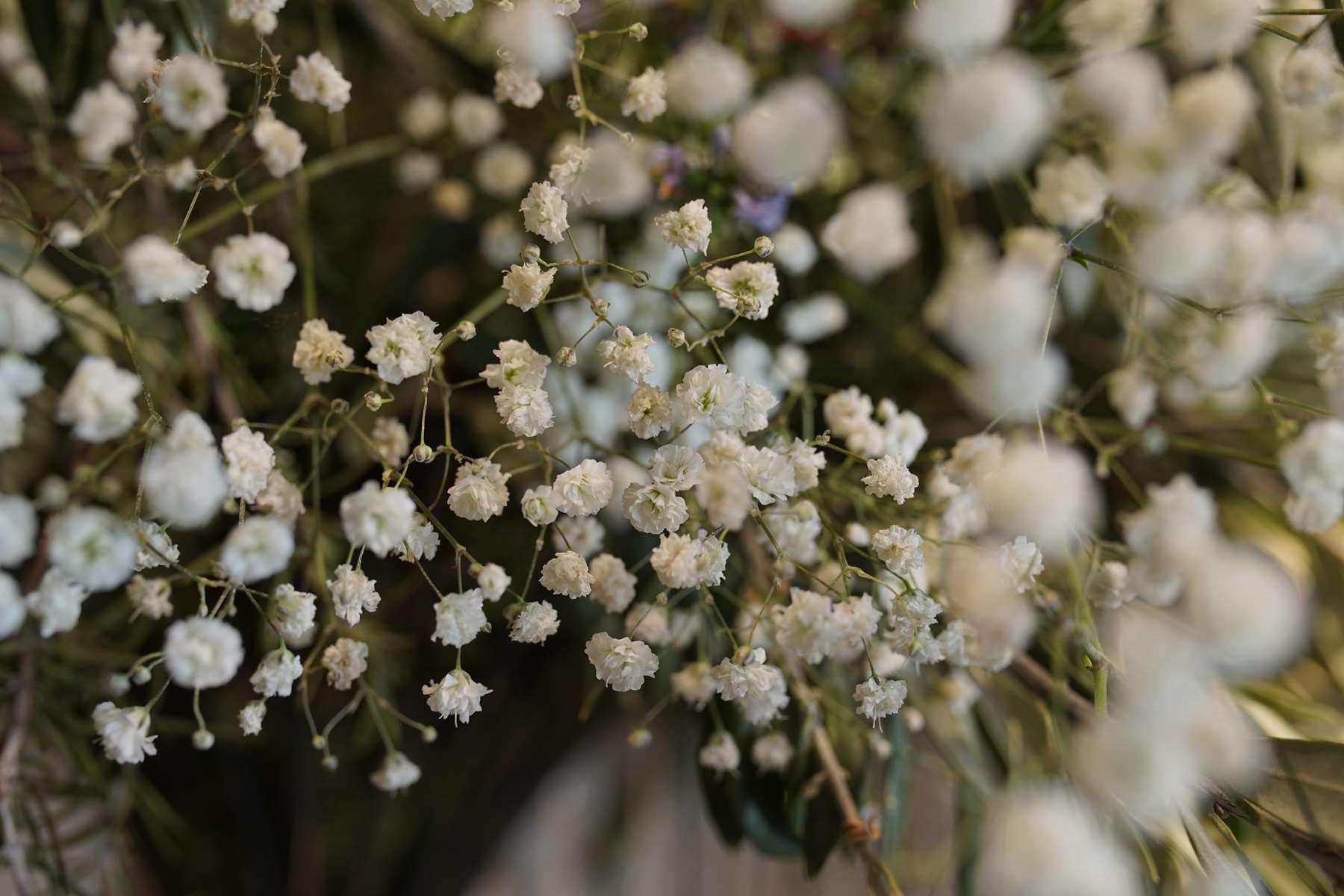 symphonie-florale-fleuriste-juvignac-montpellier-vitrine-printemps-2019 (6)