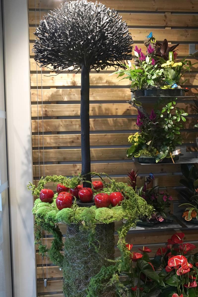 vitrine-automne-pommes-rouges-decoration-montpellier-symphonie-florale (1)
