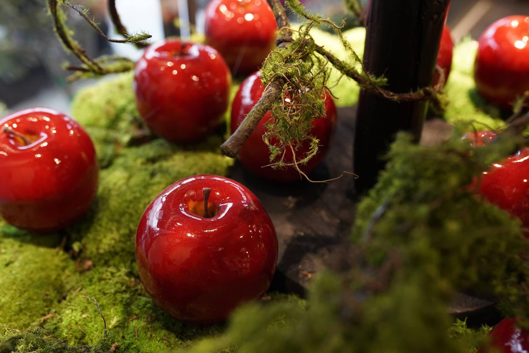 vitrine-automne-pommes-rouges-decoration-montpellier-symphonie-florale (7)