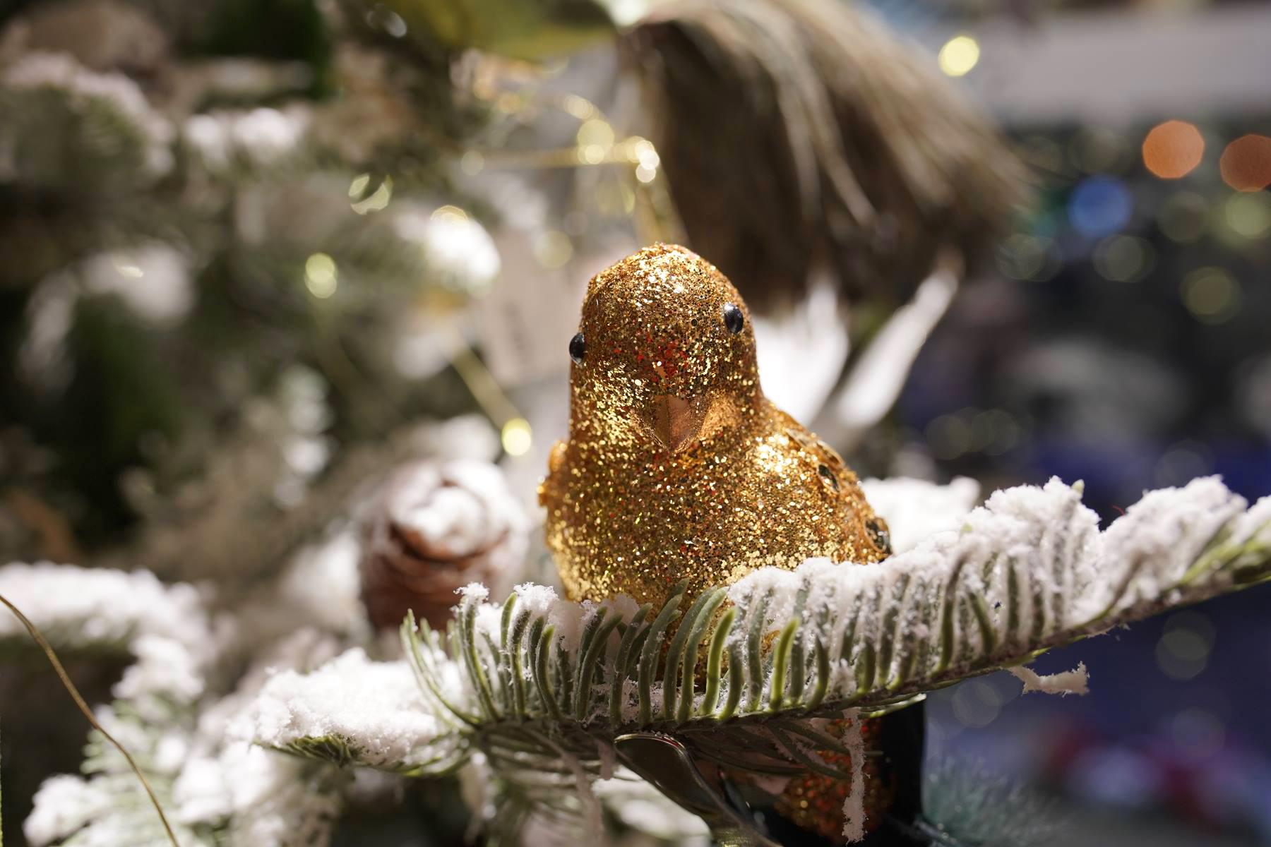 oiseaux doré paillete paillettes or noel 2019