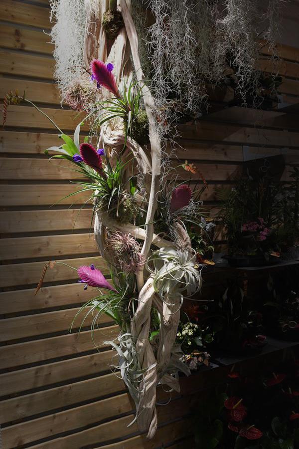 fleuriste-saussan-symphonie-florale (5)